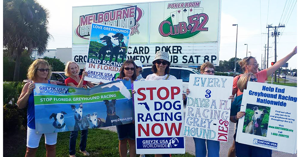 Stop dog racing in Florida rally