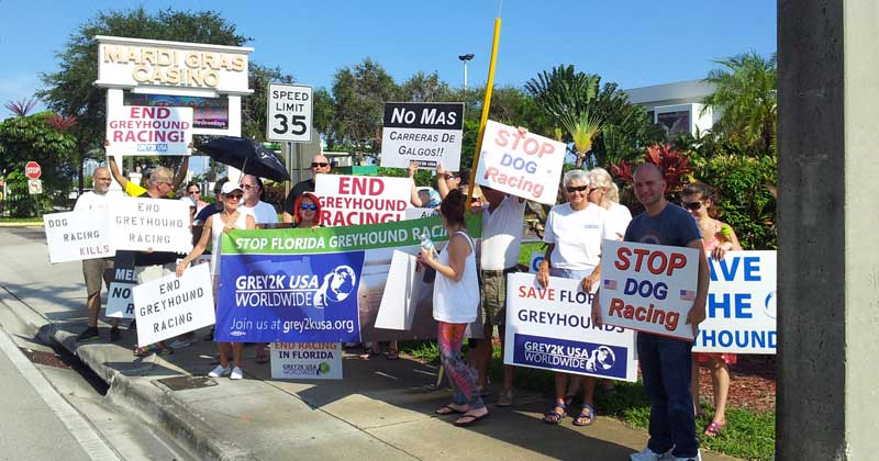 Volunteers gather to protest dog racing in Florida