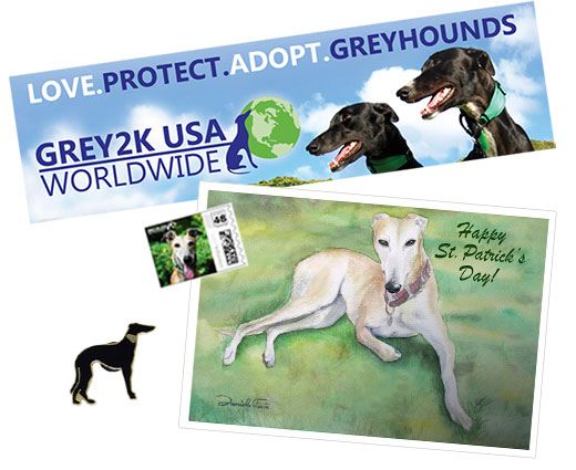 Saint Patrick's greyhound package