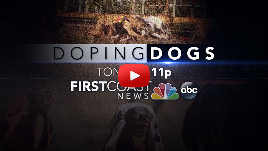 Doping dogs news story link