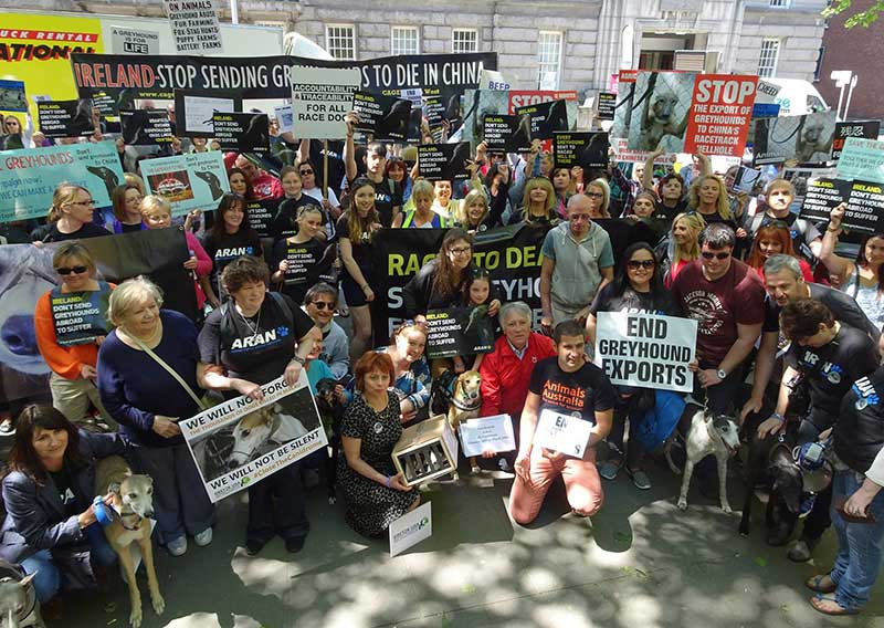 Rally for the greyhounds in Dublin