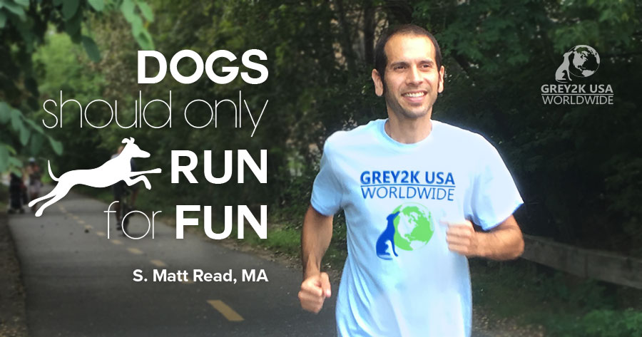 Dogs should only run for fun